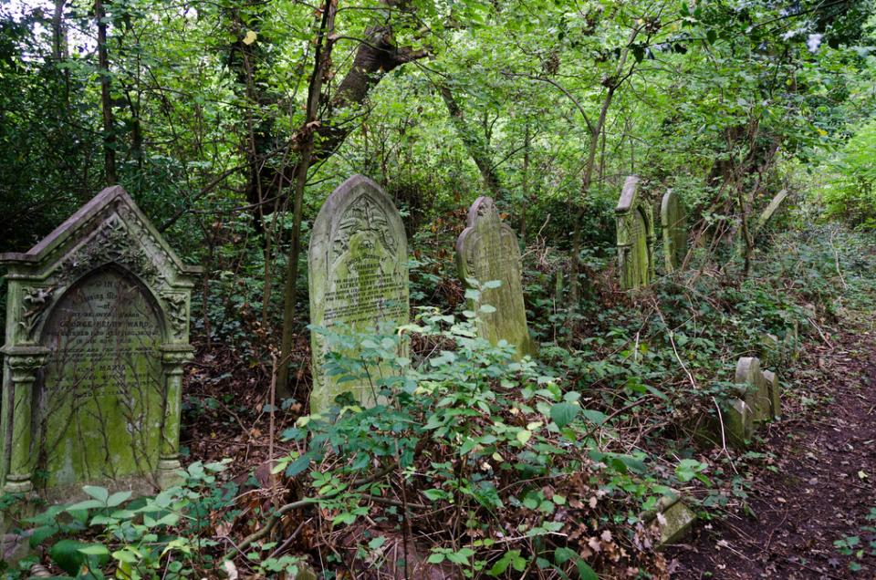 Nunhead Cemetery - 01