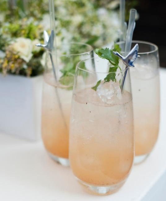 summer-prosecco-cocktail-food-drink-xlarge_transBLexaPiOBa-lbTxCY9do8ah6nAGRHlyitt2Jz2zQRKs