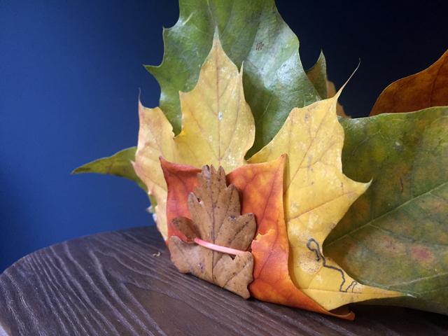 ladyland_autumn-crowm